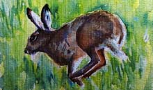 Hare on the Move watercolour, 20 x 50cm