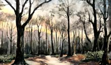 Evening Light, Wimbledon Common, 36x51 Arches